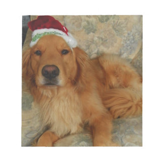 A Golden Retriever at Christmas with Santa Hat Notepad