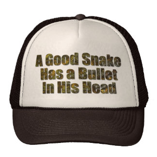 A Good Snake Has a Bullet in His Head Cap