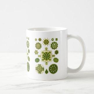 A Green Algae Coffee Mug
