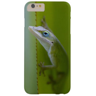 A green anole is an arboreal lizard barely there iPhone 6 plus case