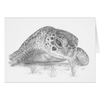 A Green Sea Turlte in Grayscale Greeting Card
