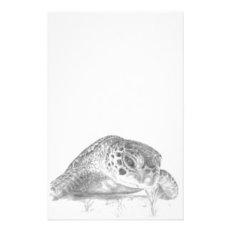 A Green Sea Turtle in Grayscale Stationery