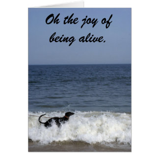 A greyhound enjoying the surf . card