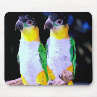 A Happy Couple Mouse Pad