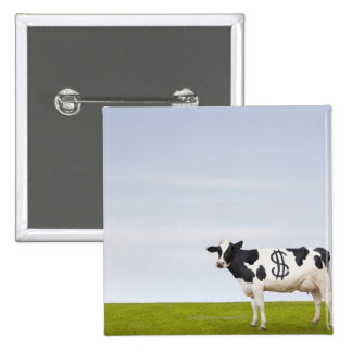 A Holstein Dairy cow with spots in the shape of 15 Cm Square Badge
