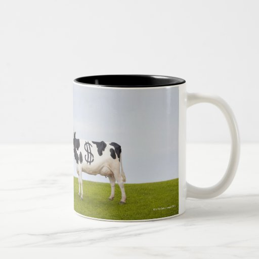 A Holstein Dairy cow with spots in the shape of Coffee Mugs