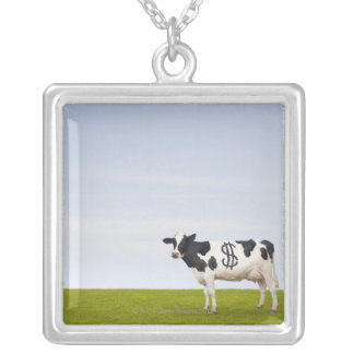 A Holstein Dairy cow with spots in the shape of Pendants