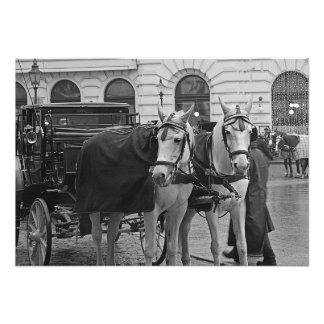 A horse-drawn carriage with horses photo print