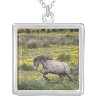 A horse running in a field of yellow wildflowers square pendant necklace