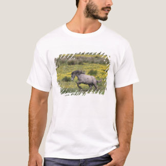 A horse running in a field of yellow wildflowers T-Shirt
