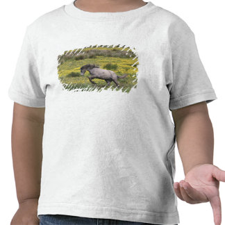 A horse running in a field of yellow wildflowers tshirts
