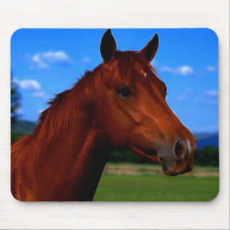 A horse standing proud mouse pad