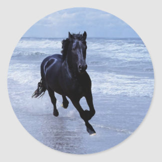 A horse wild and free classic round sticker
