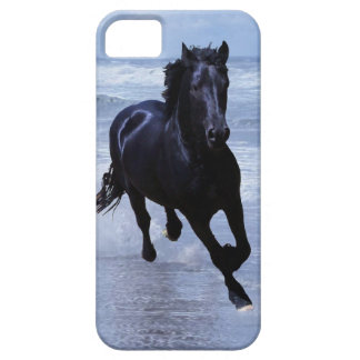 A horse wild and free iPhone 5 cases