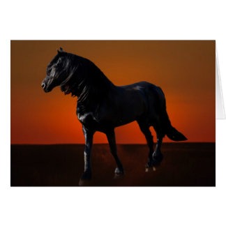 A horses sunset romp greeting card