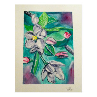 A is for Apple Blossoms Postcard