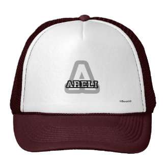 A is for Areli Mesh Hats