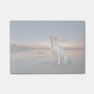 A Jack Russell Sitting Beach | Brighton Beach Post-it Notes
