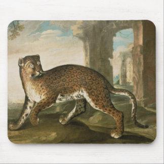 A Jaguar Mouse Pad