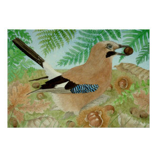 A Jay in the fall Poster