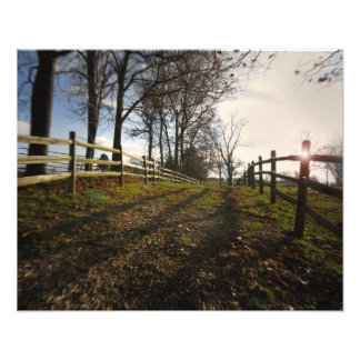 A Jog Down a Country Path Photographic Print