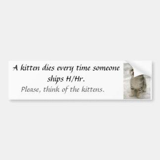 A kitten dies... bumper sticker