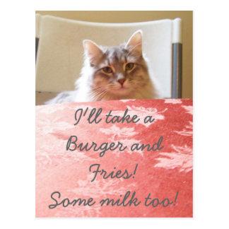 A kitty's Dream! Postcard