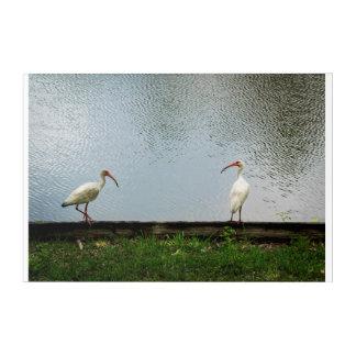 "A Lakeside Chat Acrylic Wall Art, 30"" x 20"" Acrylic Wall Art"