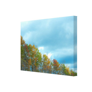 A LINE OF AUTUMN canvas Stretched Canvas Print