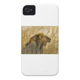 A Lion Waits, Zimbabwe Africa Case-Mate iPhone 4 Case