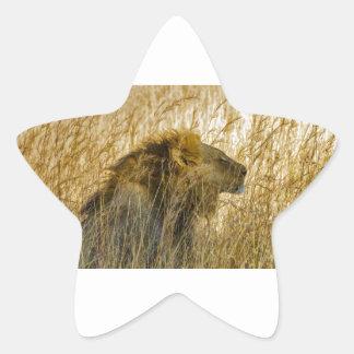 A Lion Waits, Zimbabwe Africa Star Sticker