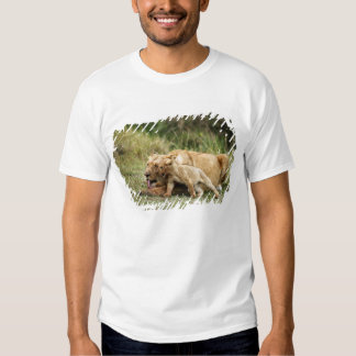 A lioness and her playful cub tees