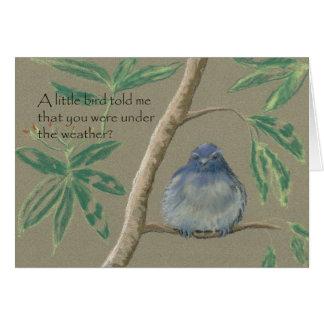 A Little Bird told me, Get Well Soon Card