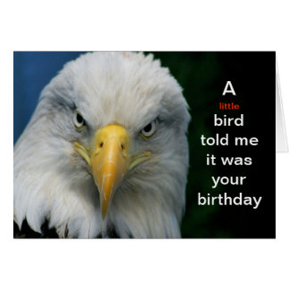 A Little Bird Told Me Its Your Birthday--Card Note Card
