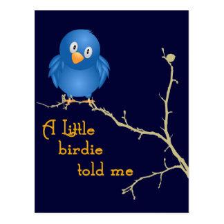 A Little Birdie Momism Greeting Card Postcard