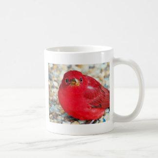 A Little Birdie Told Me Mugs
