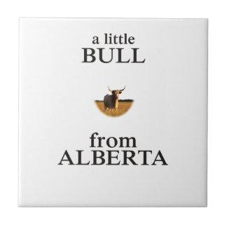 A Little Bull from Alberta Tile