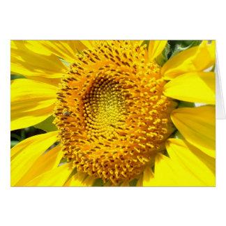 A Little Honey Bee Card
