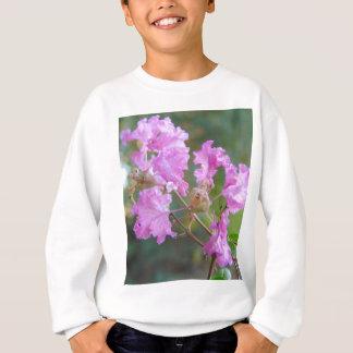 A Little Pink Sweatshirt