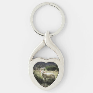 a little white lamb behind a fence in a field key ring