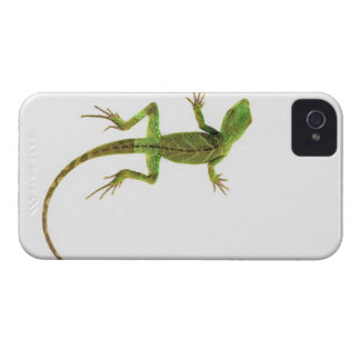 A lizard on pure white ground iPhone 4 Case-Mate cases
