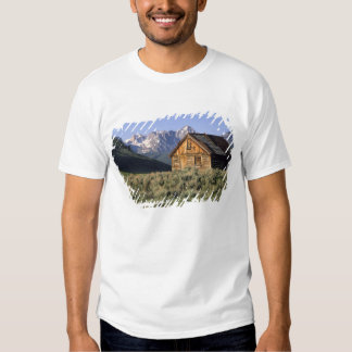 A log cabin and the Sawtooth Mountains in Shirt