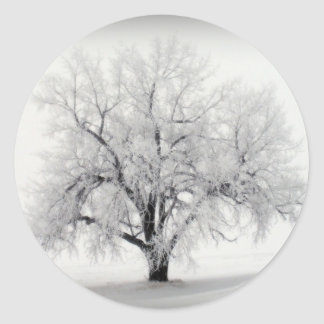 A lone Frostry Tree in the North Dakota Prairie Classic Round Sticker