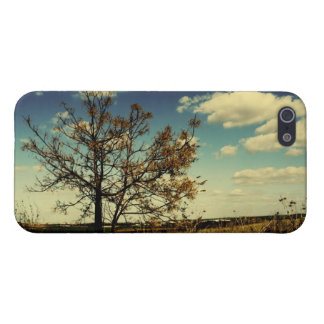 A lonely tree in a yellow dry field iPhone 5/5S cases