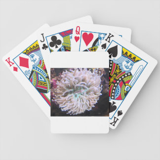 A Long Tentacle Plate Coral Bicycle Playing Cards