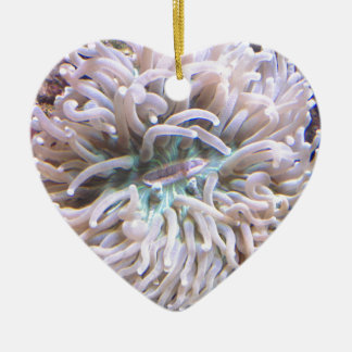 A Long Tentacle Plate Coral Ceramic Heart Decoration