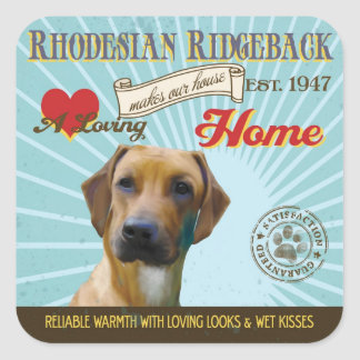 A Loving Rhodesian Ridgeback Makes Our House Home Square Sticker