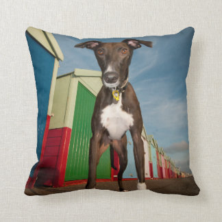 A Lurcher Standing In Front Of Some Beach Huts Cushion