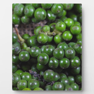 A macro photo of green pepper berries. display plaque