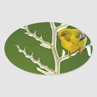 A Male Pine Warbler Perched on an Icy Branch Oval Sticker